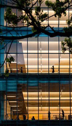 Canada's National Ballet School, Toronto by PJMixer, via Flickr