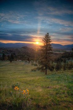Missoula, MT..I would love to live somewhere like this someday
