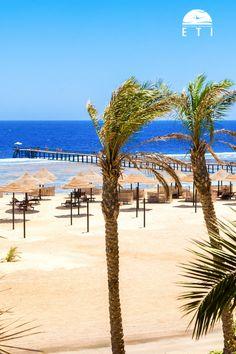 Urlaub in Ägypten - Urlaub in Marsa Alam / Port Ghalib - Urlaub am Strand - Siva Port Ghalib & Port Ghalib Resort Strand - RED SEA HOTEL!  Am Sandstrand entspannen und die Sonne genießen oder schnorcheln oder Tauchen zu gehen, ganz egal was man machen möchte, das Rote Meer ist für alles perfekt geeignet.  #egypt #strand #urlaub #steg #korallenriffe #schnorcheln #tauchen #diving #snorkling #relax #rotesmeer Marsa Alam, Sharm El Sheikh, North Coast, Am Meer, Red Sea, Hotels, Summer Vibes, City, Water