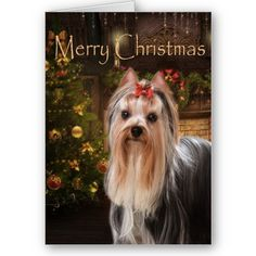 Holiday Yorkie Christmas Card from Zazzle.com
