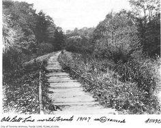 toronto belt line Toronto City, Back In The Day, Ontario, Photo Art, Trains, Past, Transportation, Nostalgia, Pride