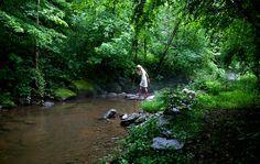 Rock bridges across creeks defined my childhood summers.
