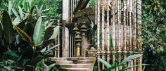 Edward James & the Making of Las Pozas ~  Words by Sally Wilson  Images by Sally Wilson from THE PLANTHUNTER...