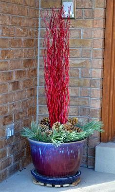 Cute for winter pots on porch
