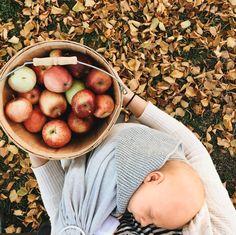 Apple picking and babywearing