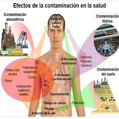 ¿Cómo y a qué partes del cuerpo afecta la contaminación concretamente?