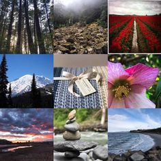 My 2017 best nine you can tell we take most of our pictures outdoors! Did any of your favorites make the list? #2017bestnine #pnwlife #pnwbeauty #etsy #iphoneonly