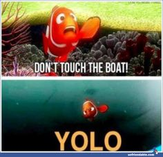 yes and lets all learn an important lesson from this, nemo was soon captured after this . whose saying yolo now nemo ?