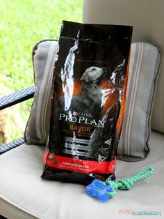 Purina Pro Plan - the only dog food for our Maddie + a No Sew Dog Bed Project that only takes 15 minutes and less than $10 to make! #ProPlanPet #Ad