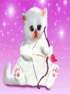 Divertidos gifs animados como este de un divertido gatito cupido.