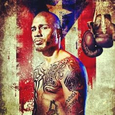 217 Best MIGUEL COTTO images | Miguel cotto, Boxing, Floyd mayweather