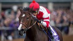 Songbird Soars Among Breeders' Cup Saturday Stars - America's Best Racing. The Jockey Club