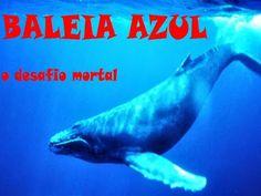 Baleia azul: o desafio mortal das redes sociais | Entre Coisas