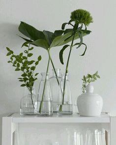 Good morning! How simple and beautiful! Buenos días. Alegría verde, sencilla y…