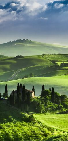 The green lush rolling hills of ~ Tuscany, Italy