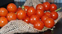 Ako uchovať unikátnu chuť paradajok až do zimy? Tomato Vegetable, Healthy Nutrition, No Cook Meals, Starters, Salad Recipes, Good Food, Cocktails, Cooking Recipes, Snacks