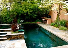 Sublime Small In Ground Pools Ideas in Pool Traditional design ideas ...