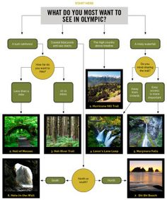 Which Trail Should I Hike in Olympic National Park?