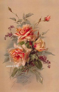 Victorian Summer Delights Print Catherine Klein Half Yard Long Rose Roses…