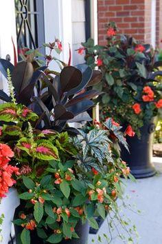 Container garden Flower Planters Pinterest Gardens