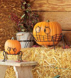 Spooky Spider Pumpkin Holders