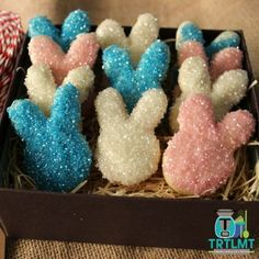 Glitter Bunny Biscuits - The Road to Loving My Thermo Mixer Whole Orange Cake, Weetbix Slice, Cinnamon Donuts, Pink Food Coloring, Lemon Loaf, School Lunch Box, Homemade Donuts, Square Cakes, Cake Tins