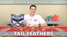 Tail Feathers - Overview