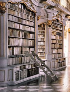 WOW... A little bit ornate for me, but I LOVE the idea of a library like this and the steps are fabulous!