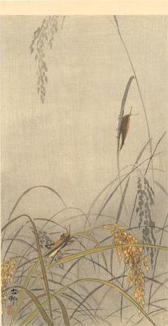 Ohara Koson (1877-1945) | Grasshoppers on Rice Plants