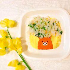 コルンのご飯🐶🍴 • もちろん七草粥🌿! これで一年健康で元気に走り回れるな😎 • お皿剥げてる笑 • #犬#トイプードル#プードル#シルバー#黒#愛犬#可愛い#女の子#無病息災#ご飯#家族#ふわもこ部#料理#日本#和食 #dog#toypoodle#poodle#silver#black#cute#girl#japanese#food#dogfood#doglife#cooking#instadog#good#nice