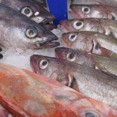 Hangi Mevsimde Hangi Balık Yenilir?