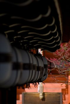 Close up-- Kitano-tenmangu Shrine, Kyoto