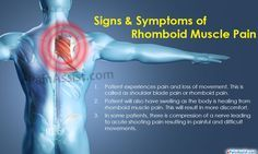 Rhomboid Muscle Pain|Causes|Symptoms|Treatment|Exercises|Prevention