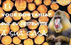 ASSINEM A PETIÇÃO CONTRA O DESMATAMENTO VAMOS AJUDAR A #GREENPEACE A REALIZAR ESSA AÇÃO http://www.greenpeace.org/brasil/pt/Noticias/Projeto-do-Desmatamento-Zero-e-aberto-para-consulta/ ✘NÃO ao desmatamento  ✘ NÃO apoie  ✘ NÃO faça  ✘ NÃO seja ignorante  Cuide dos animais e do clima do nosso planeta ✞