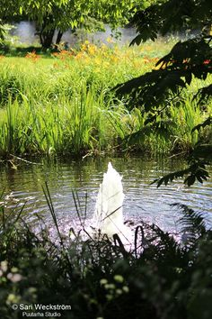 NEWS. trends. Lepaa 2015 puutarhanäyttely | Asuntomessut
