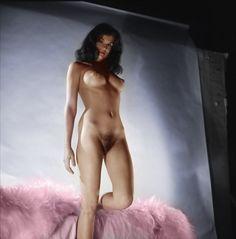 Gallery black cat nude art