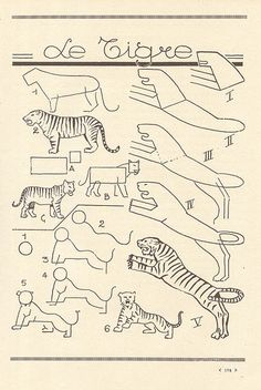 How to draw a tiger (les animaux 86 Drawing Lessons, Drawing Techniques, Art Lessons, Animal Sketches, Animal Drawings, Pencil Drawings, Doodle Drawings, Easy Drawings, Drawing Exercises