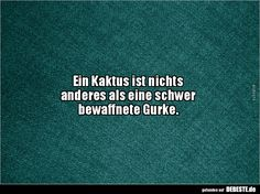 Ein Kaktus ist nichts anderes als eine schwer. Sarcastic Quotes, Funny Quotes, Social Work Quotes, Words Quotes, Sayings, German Words, Gamer Humor, Life Quotes To Live By, Good Jokes