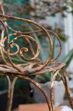 rusty garden chair ...