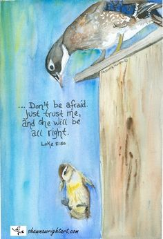 My passion is sharing Bible Promises; birds my favorite subject, watercolor the medium. Bible Verse Art, Bible Verses Quotes, Bible Scriptures, Christian Life, Christian Quotes, Bibel Journal, Jesus Christus, Bible Promises, Favorite Bible Verses