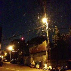 .@jisoo_holic   #눈 #가로등 #저녁 #늦은밤 #골목길 #집에가는길 #예뻐요   Webstagram