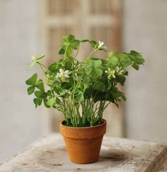 Plant lovers without a green thumb, rejoice! This sweet little potted plant  adds life 4cdd9ead41c