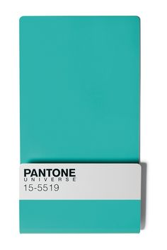 Pantone Wallstore w/ Mini Magnets in Turquoise design by Seletti