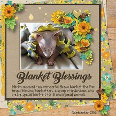 Blanket Blessings