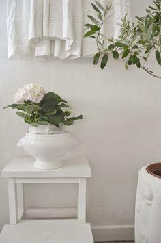~ hagbacken.blogspot.se ~ Visst är hortensian på bilderna vacker med sin blekrosa nyans? Den är inhandlad på ÖoB.