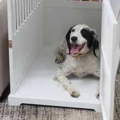 The Boomer & George Newport II Pet Crate End Table doubles as a comfortable place for your dog, as well as a stylish end table for your living room. Wooden Cat Crate, Decorative Dog Crates, Diy Dog Crate, Dog Crate End Table, Dog Crate Furniture, Puppy Beds, Dog Cages, Unique Cats, Dog Design