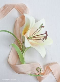DIY Paper Easter Lily: free printable template + tutorial  {Lia Griffith}