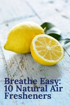 Breathe Easy: 10 Natural Air Fresheners | Home Care Tips | Natural Cleaning Products | DIY Air Neutralisers