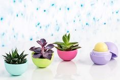 Eos empty? Here's a bunch of diys:) planter, LED nightlight, hold sm. jewelry + more..!!