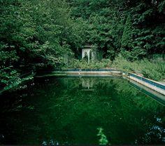 eerie pool in brooklyn, new york's abandoned navy yard